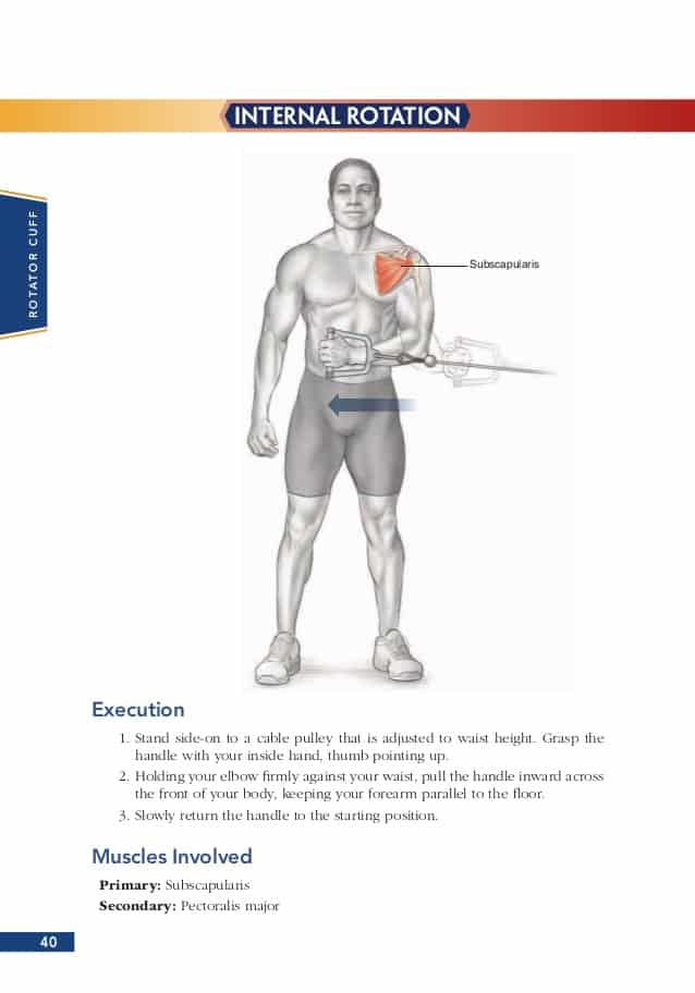 Bodybuilding Anatomy Book Review Sand And Steel Fitness