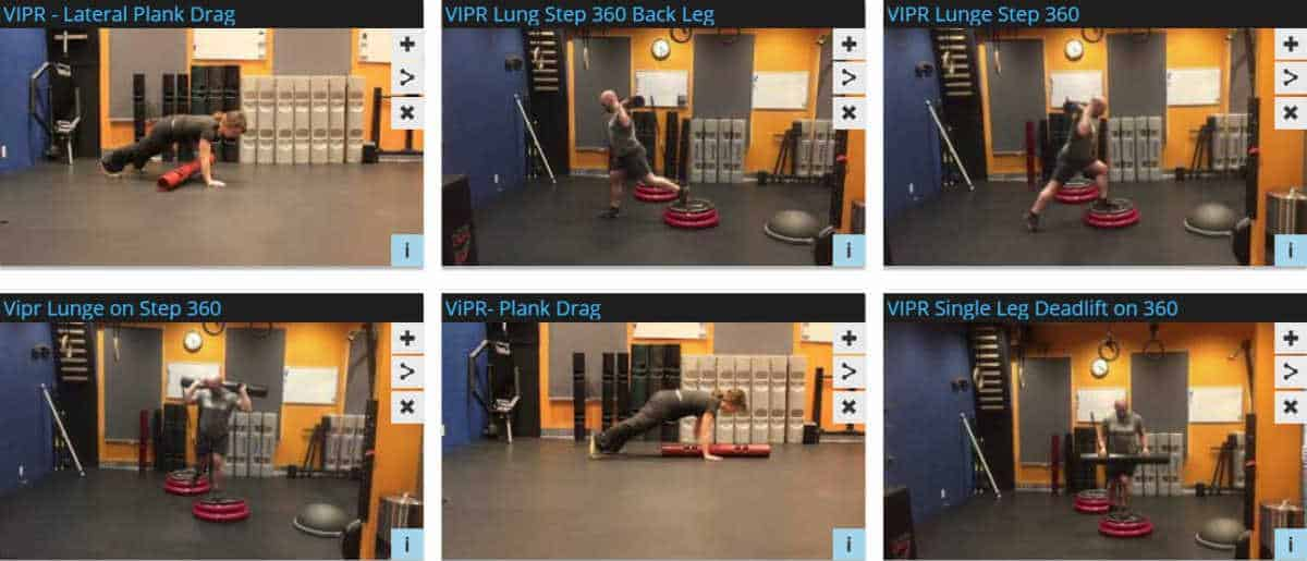 VIPR Exercises and Techniques
