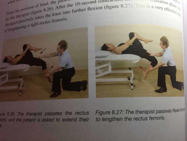 Quad Bicep Femoris Stretch