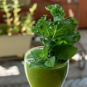 Green Smoothie Detox FAQ Removing Toxins