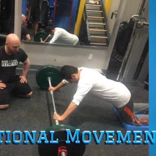Luis Functional Movement Newsletter
