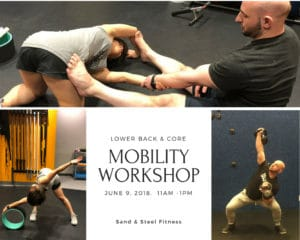 Lower Back and Core Workshop