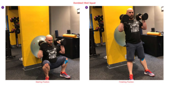 Dumbbell Swiss Ball Wall Squat - Wrist Pain