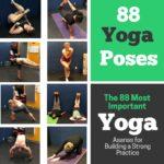 The 88 Most Important Yoga Poses Alexandria VA
