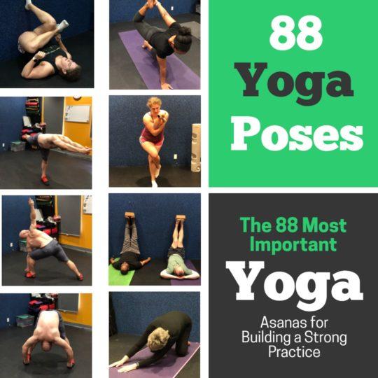 Alignment Yoga Classes Alexandria VA - 88 Yoga Poses