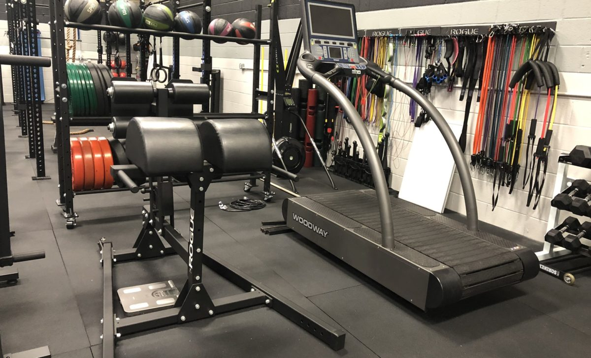 Rogue GHD Woodway Treadmill