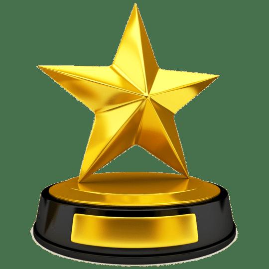 Iron Star Gold Award