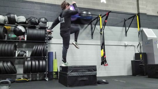 Step-ups for Strength and Weight Loss Training