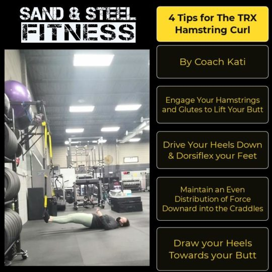 TRX Hamstring Curl Technique Infographic