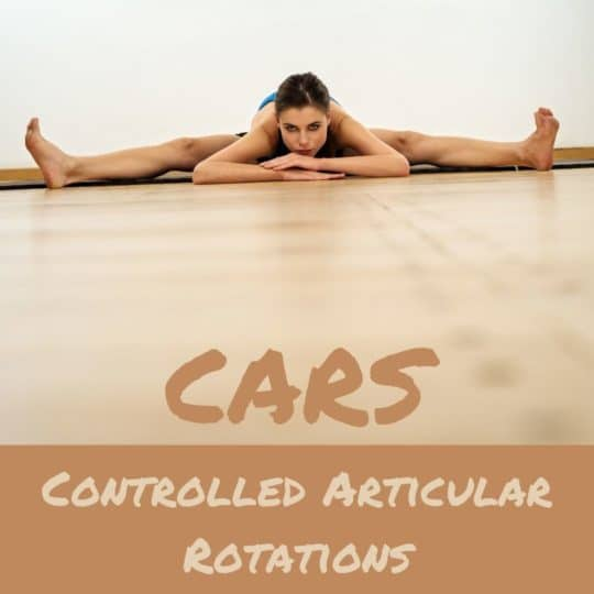 CARS Controlled Articular Rotations